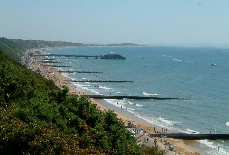 Dorset Business News Round up