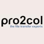 Pro2Col - Client Testimonial