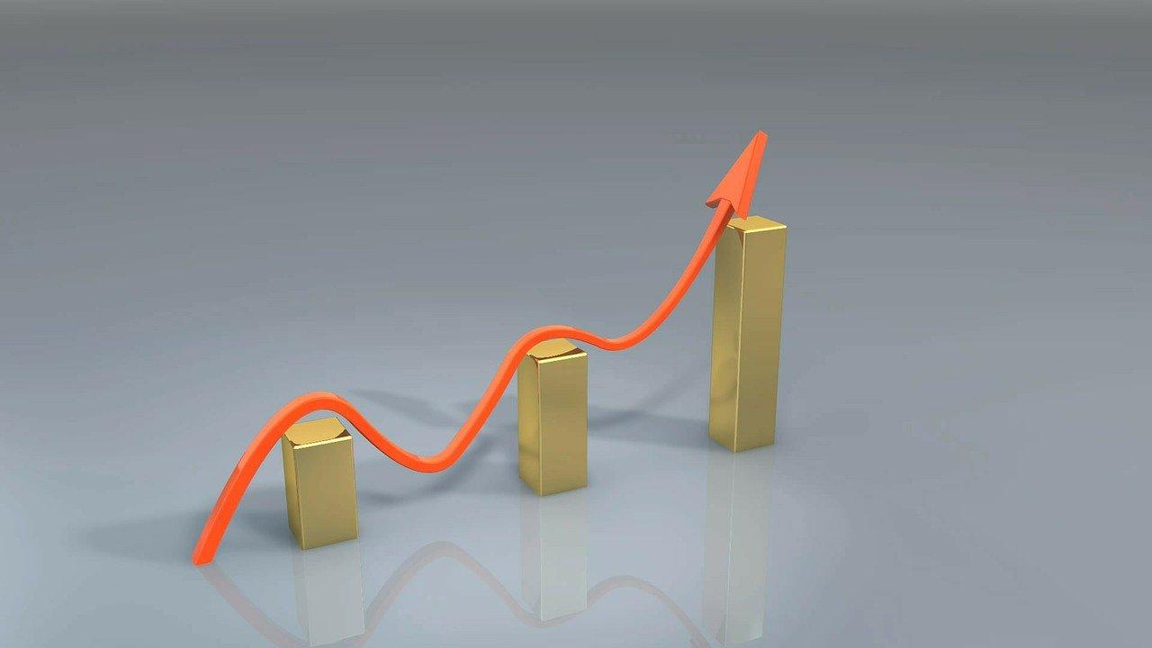 Job Market Report